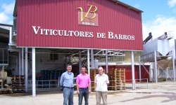 Barros winery 250x160